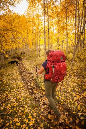 woman and dog on hiking trail in colorado in the fall